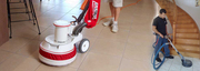 Cheap Carpet Cleaning|Steam Carpet Cleaning|Flood Damage Carpet